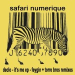 safari numerique_right_size_300px